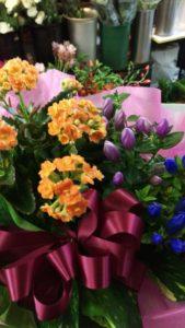秋の花寄せ鉢